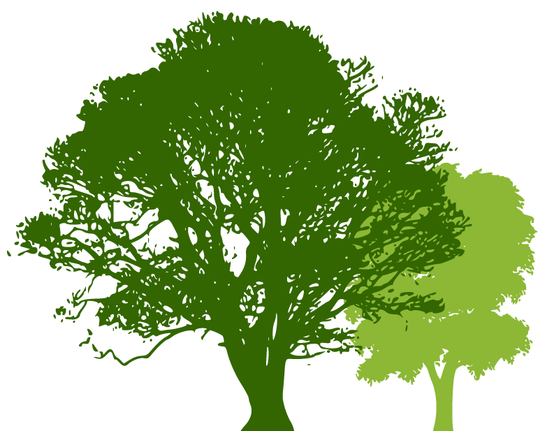 Energetic Tree Lopping trees